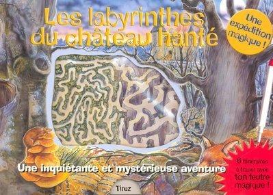 9782700010688: Les labyrinthes du château hanté : Une inquiétante et mystérieuse aventure