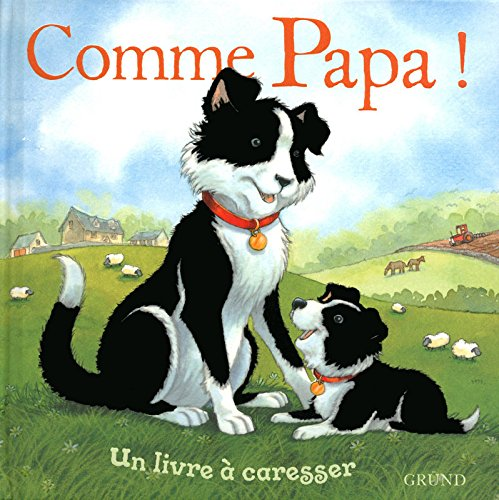 9782700028225: Comme papa ! (French Edition)