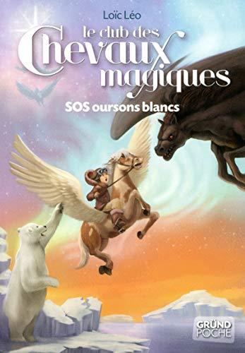 9782700028911: Le club des chevaux magiques, Tome 2 (French Edition)