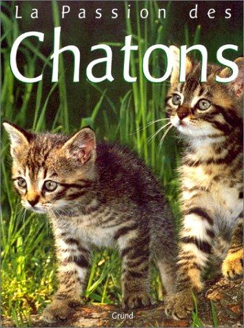 Love of Kittens: Angela Sayer