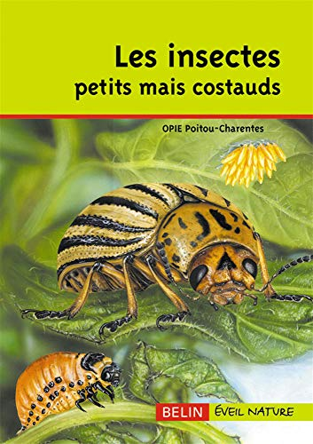 9782701137827: Les insectes petits mais costauds (French Edition)
