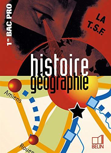 9782701140636: Histoire g�ographie 1e Bac pro