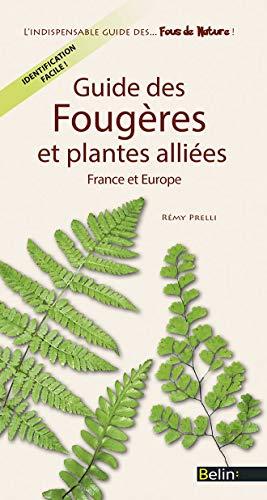 9782701192765: Guide des Fougeres et Plantes Alliees de France et d'Europe