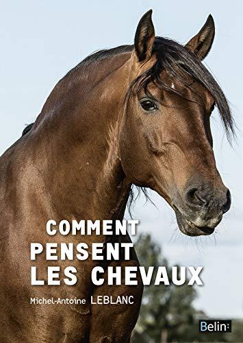 COMMENT PENSENT LES CHEVAUX: LEBLANC