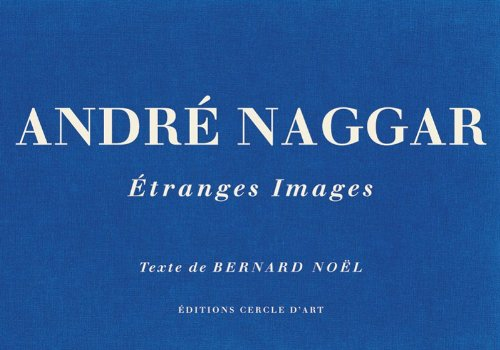 9782702209288: André Naggar (French Edition)