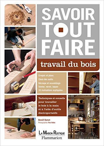 9782706600210: Travail du bois (French Edition)