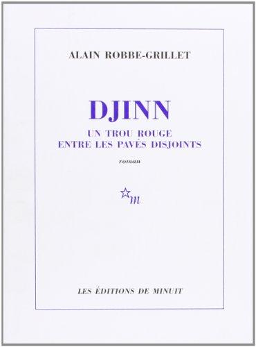 9782707310385: Djinn (French Edition)