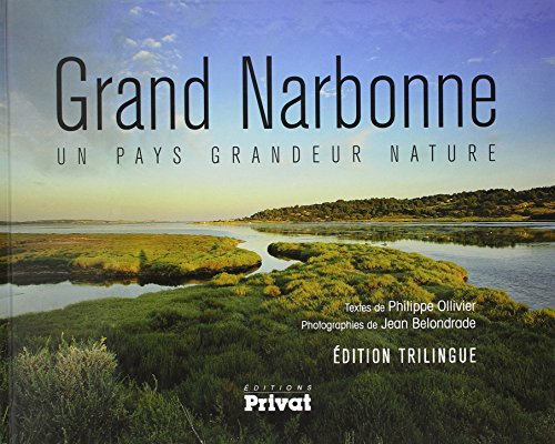 9782708959422: Le grand Narbonne