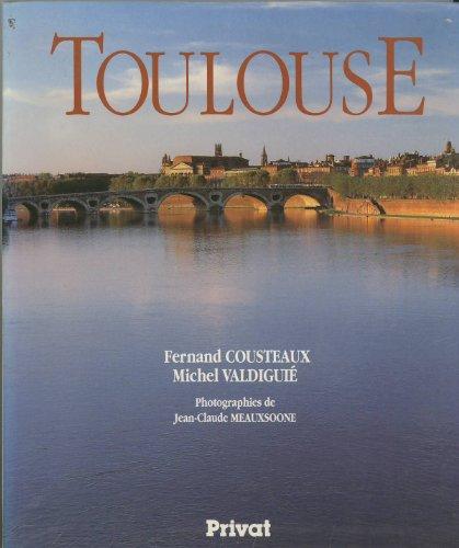 9782708990463: Toulouse: Au fil du temps (French Edition)