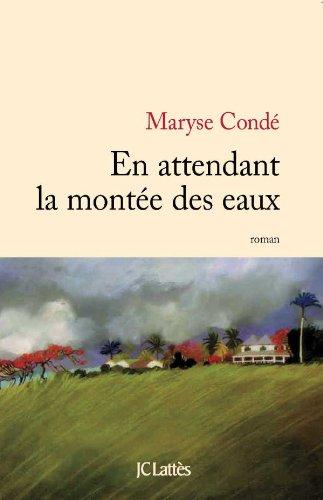 9782709633215: En attendant la montée des eaux (French Edition)