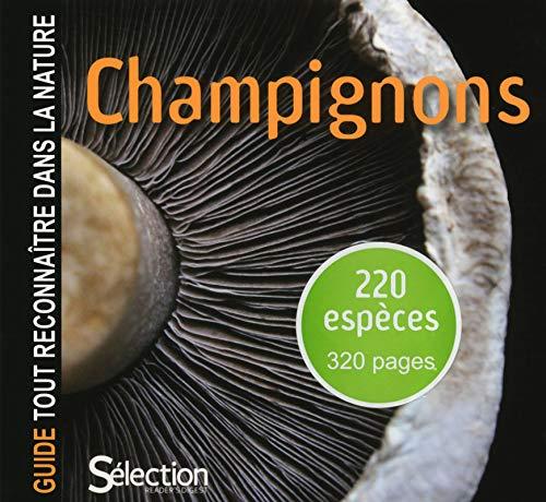 9782709824026: Guide tout reconnaître dans la nature - CHAMPIGNONS