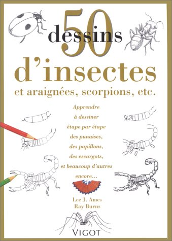 9782711413331: 50 dessins d'insectes (French Edition)