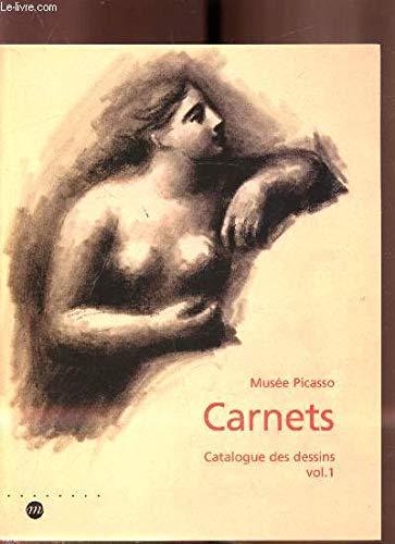 9782711833092: Picasso, Carnets de dessins : 1899-1924