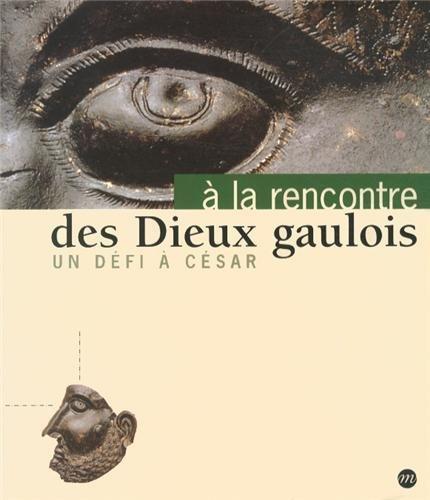 9782711838516: A la rencontre des dieux gaulois : Un d�fi � C�sar