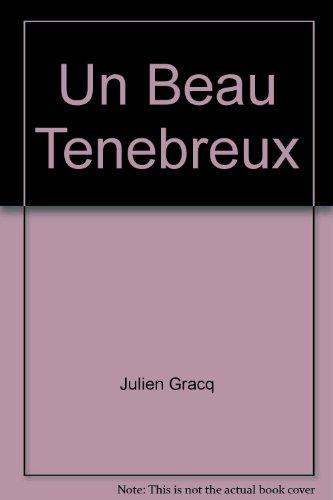 9782714301116: Un Beau Tenebreux