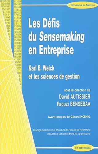 Les Défis du Sensemaking en Entreprise : David Autissier; Faouzi