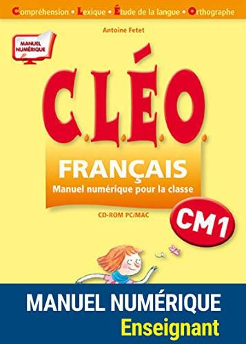 CLEO; CM1