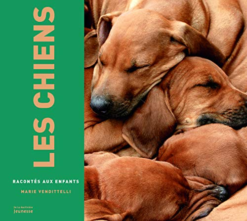 9782732455440: Chiens Racont's(les) (French Edition)