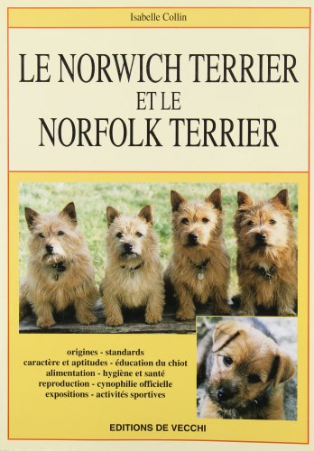 Le norwich terrier et le norfolk terrier