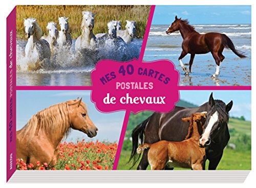 MES 40 CARTES POSTALES DE CHEVAUX: COLLECTIF