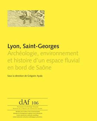 Lyon, Saint-Georges : Archéologie, environnement et histoire d'un espace ...