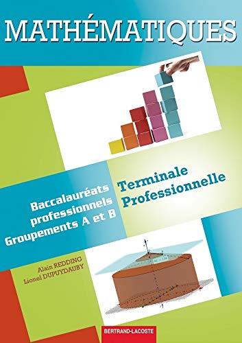 9782735223831: Mathématiques Terminale Pro Industriels