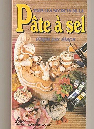 9782737230547: Tous les secrets de la pâte à sel : Étape par étape