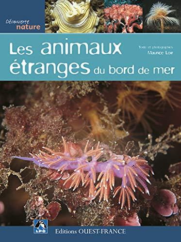 9782737337710: animaux étranges en bord de mer