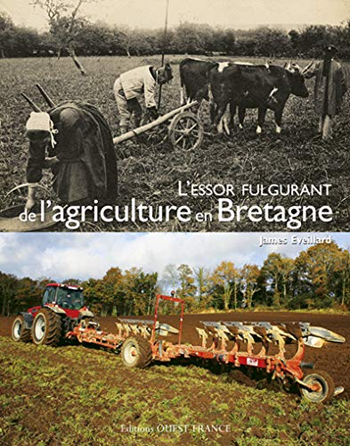 9782737346453: L'essor fulgurant de l'agriculture en Bretagne