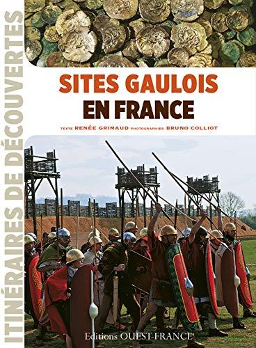 9782737358906: Sites Gaulois en France