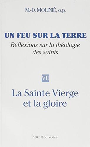 9782740308790: Un feu sur la terre nøvii : la saint vierge et la gloire