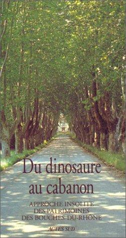 9782742700035: Du dinosaure au cabanon: Approche insolite des patrimoines des Bouches-du-Rhône (French Edition)