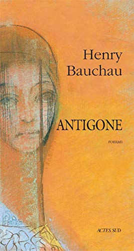 9782742713387: Antigone: Roman (French Edition)