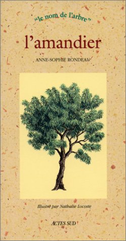 AMANDIER (L'): RONDEAU ANNE-SOPHIE
