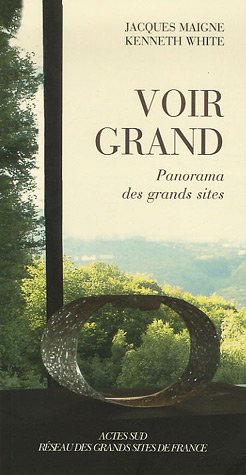 9782742767502: Voir grand (French Edition)