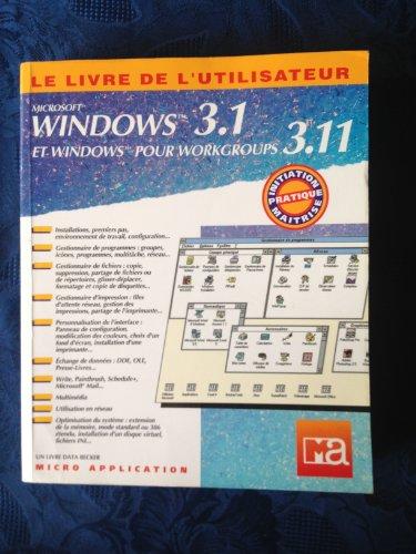 Windows 3.1, Windows pour Workgroups 3.11 : Anonyme