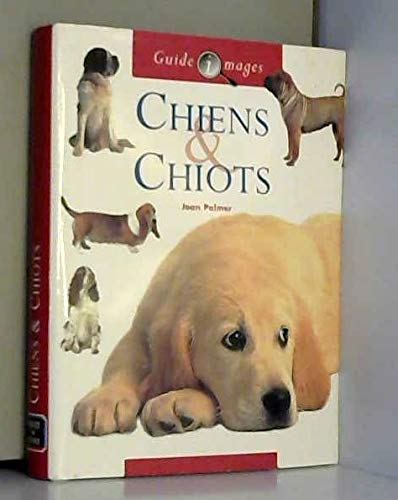 9782743421052: Chiens & chiots