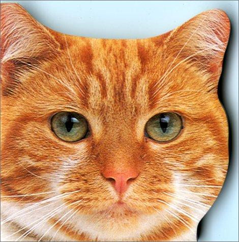 9782743800826: Magiformes : chats et chatons