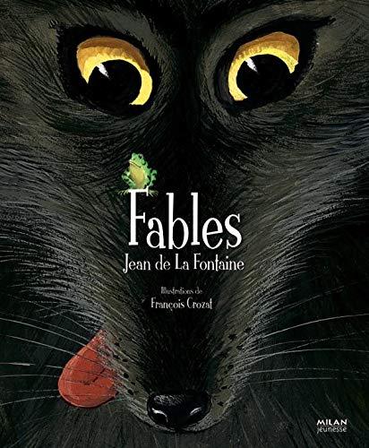 9782745900661: Fables de la fontaine (French Edition)