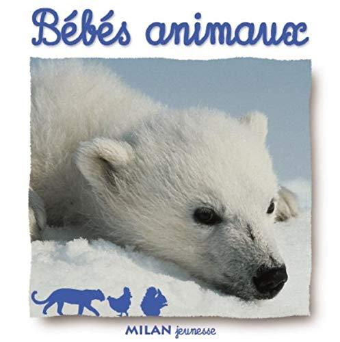 9782745908285: Bébés animaux