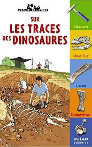 9782745909794: Sur les traces des dinosaures
