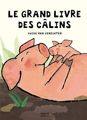9782745912404: Le Grand Livre des câlins