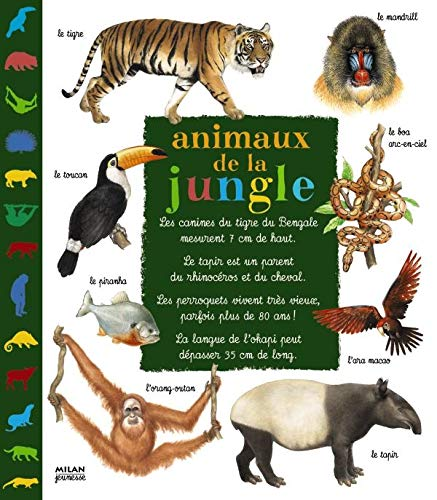 9782745912930: Animaux de la jungle
