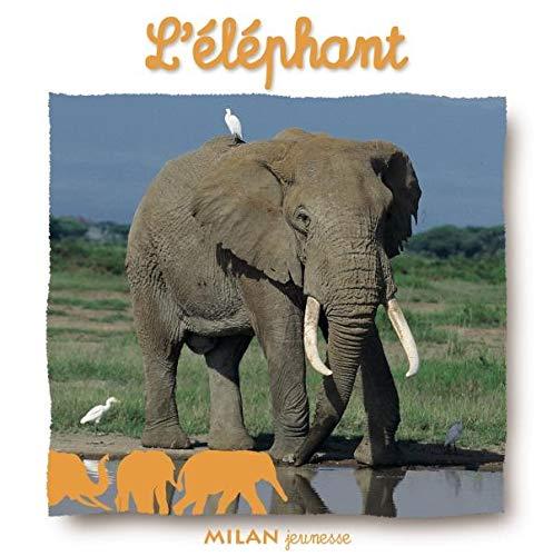 9782745914071: L'éléphant