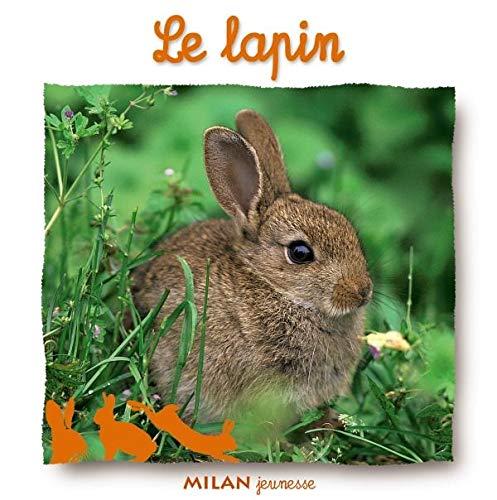 9782745914088: Le Lapin