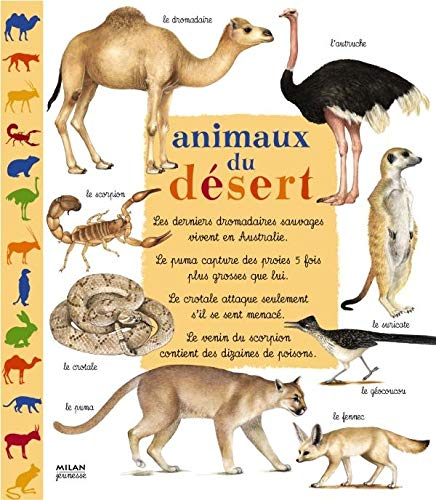 9782745914453: Animaux du désert (French Edition)
