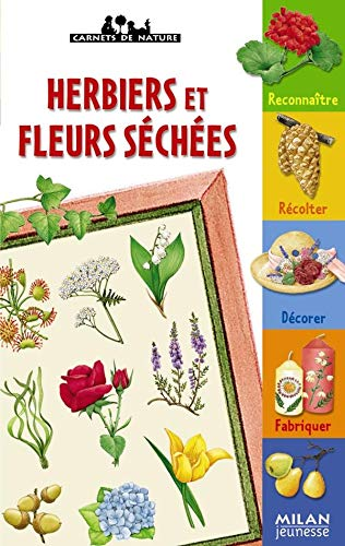 9782745916105: Herbiers et fleurs sèchées (French Edition)