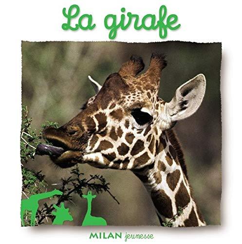 9782745917089: La girafe
