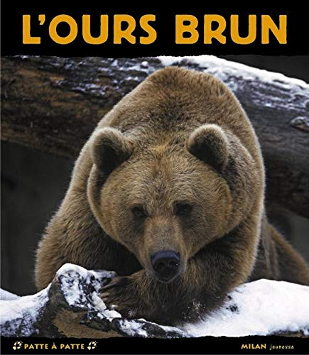9782745917386: L'ours brun (French Edition)