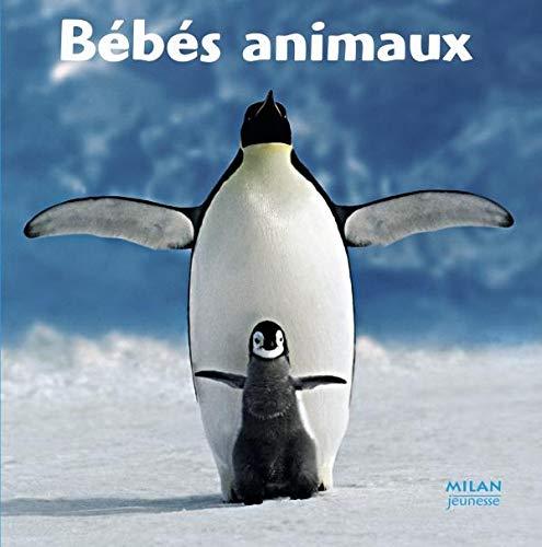 9782745920874: Le Tour Du Monde: Bebes Animaux (French Edition)